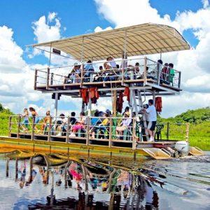 10 motivos para visitar o Pantanal quando se vem à Bonito!
